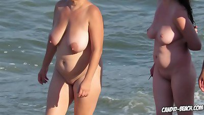amateur nude  beach pussies voyeured with hidden cam